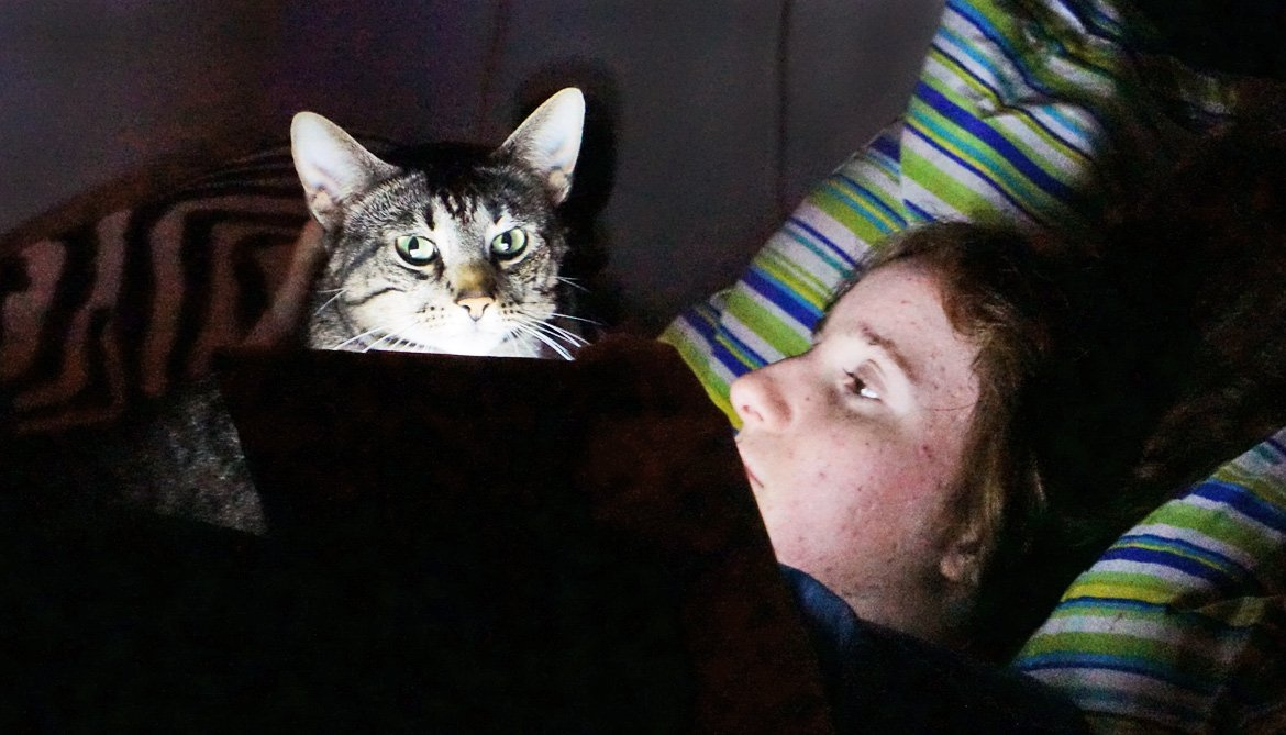 girl in bed with cat and tablet