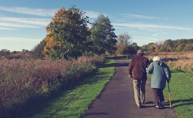 Elder couple walking in the park