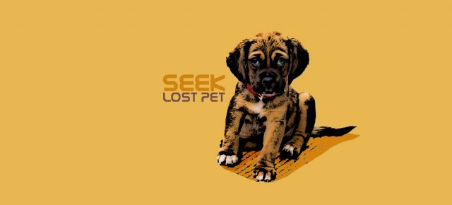Seek Lost Pet promo image