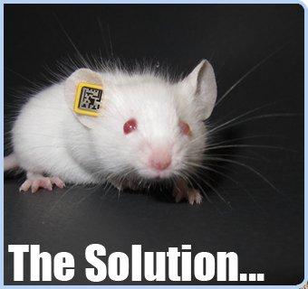 lab mouse id solution