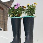Boots recycled as planter