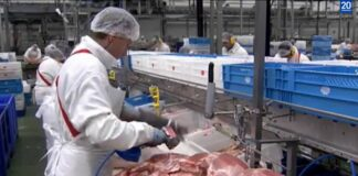 Coronavirus outbreak in a German slaughterhouse