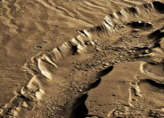 Mars life in subsurface
