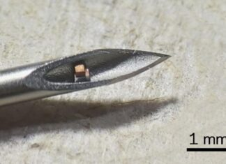 Smallest chip in the world