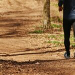 Forest track for running